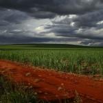 Geopolíticas VI - Agronomías sostenibles