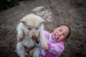 El perro era básico para la supervivencia en Groenlandia. Foto de Kyle Mortara
